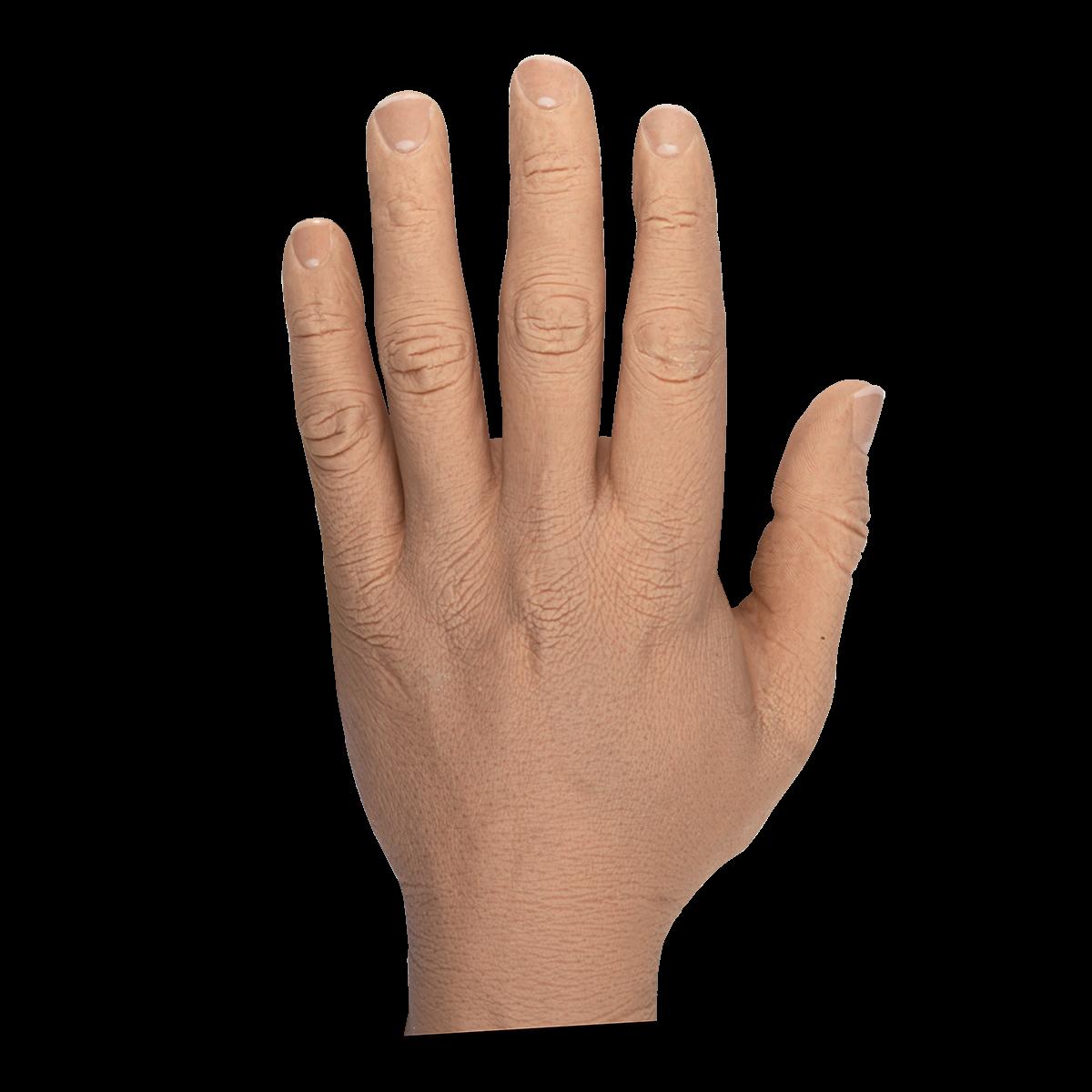 "Male Adult 3 3/4"" Glove"