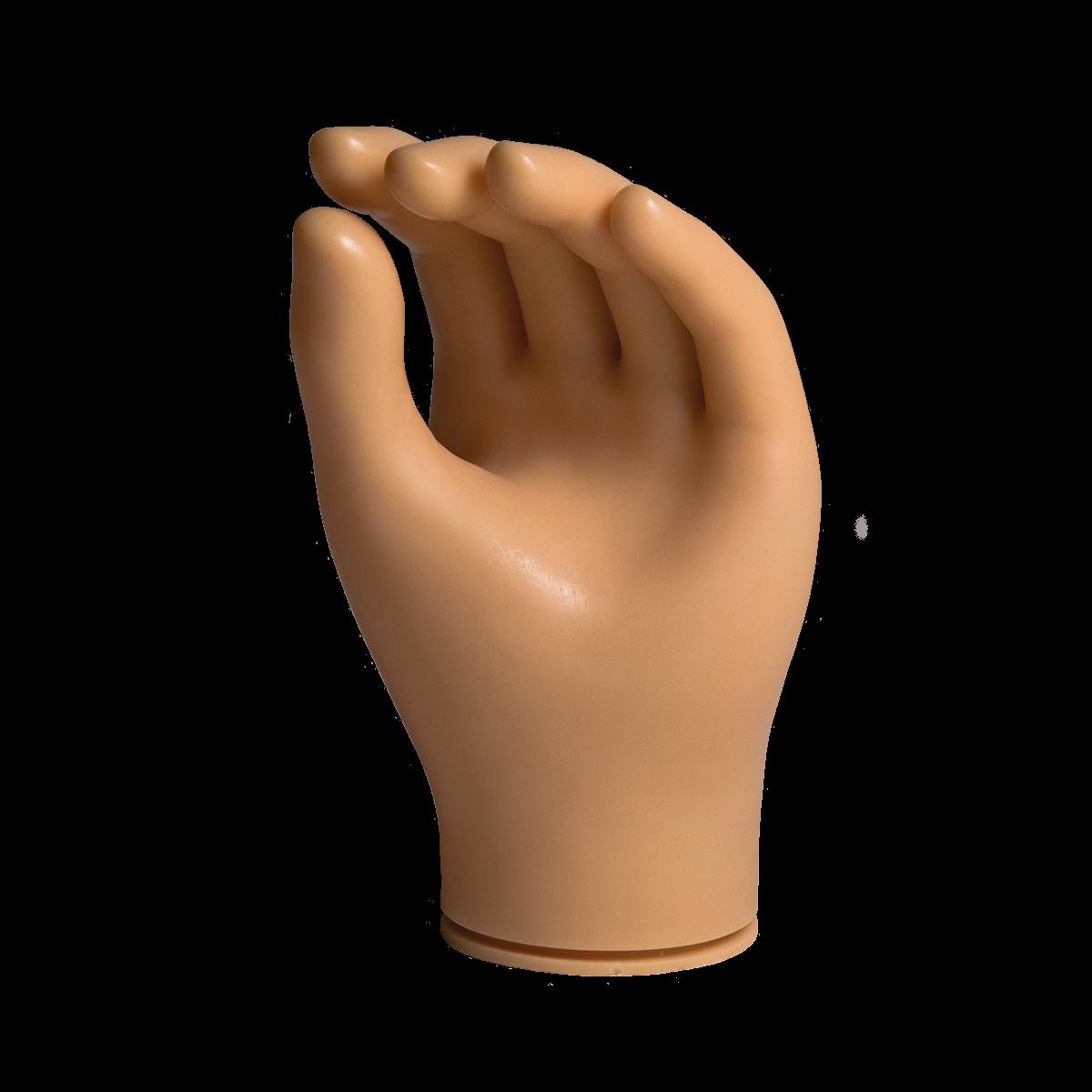 Inner Hand Shell