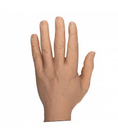 "Male Adult 3 3/4"" Glove"