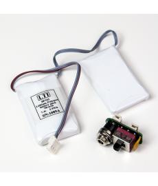 LTI Battery w/ Recharge Module Set