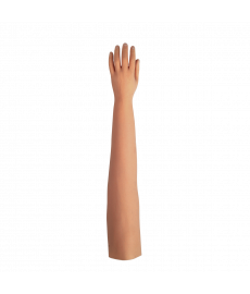 "Cosmetic Glove - Adult Male 3 1/4"" Long Fingers / Long Mold"