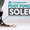 Soleus - Foot Function